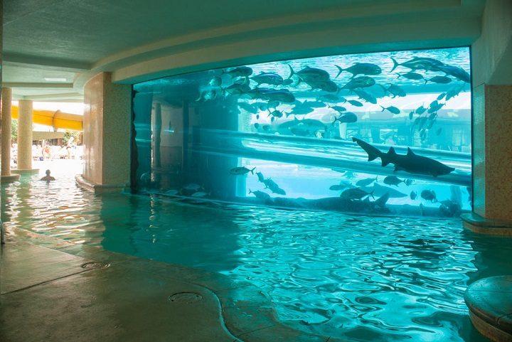 most beautiful swimmingpools