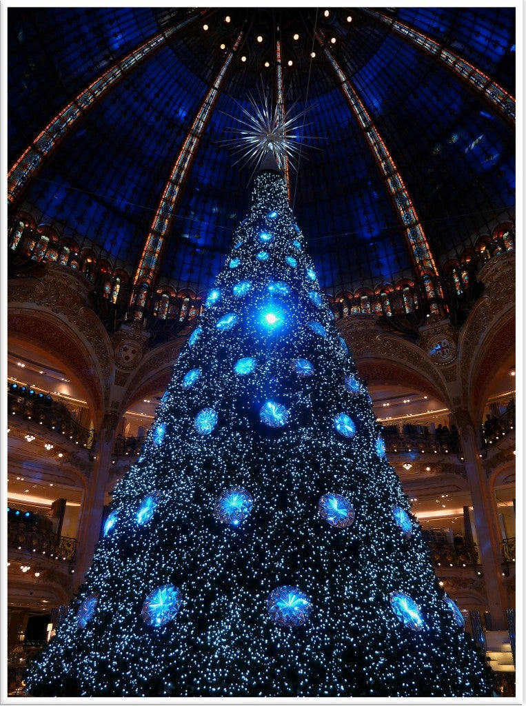 Paris lights and Christmas tree