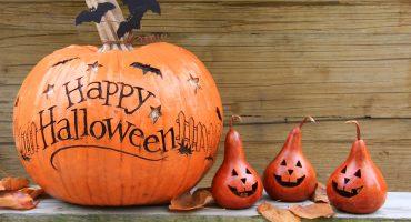 Greatest Halloween Jack-o-Lanterns