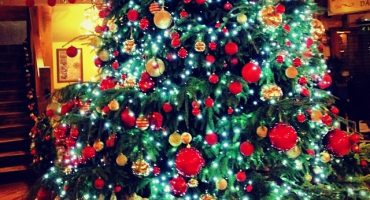 The Brightest Christmas Trees on Instagram
