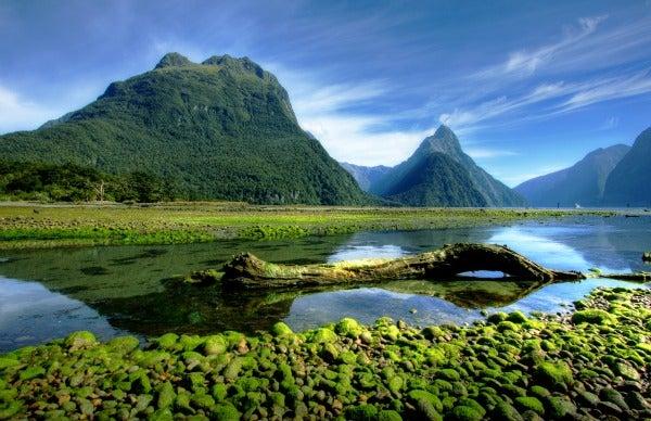 Instant Win New Zealand