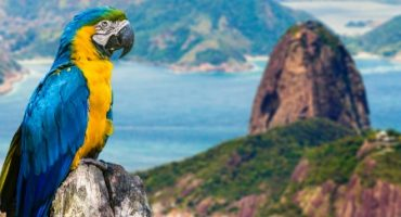 Rio – the Dos and Don'ts of Local Etiquette