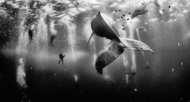 National Geographic Traveler Photo Winners