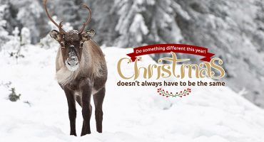Do something different for Christmas and Win £475!