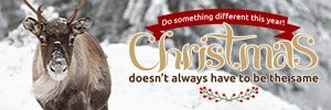 Do something different for Christmas