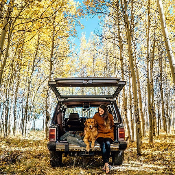 Hanging out in Kenosha Pass, Colorado via @aspenthemountainpup