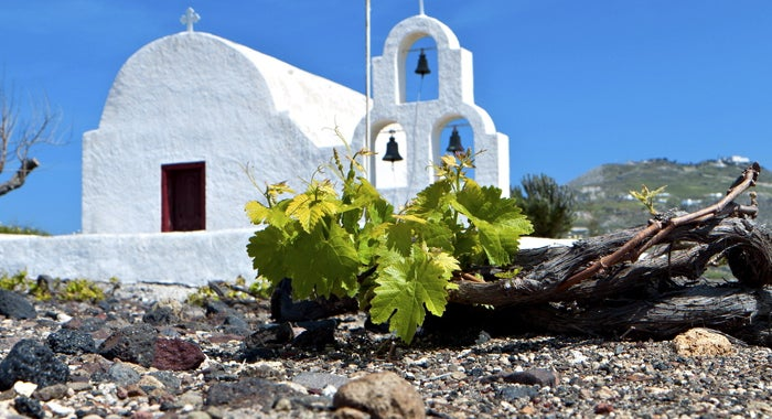 Greek Islands, a paradise for wine lovers