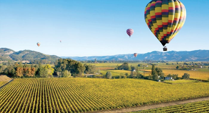 Wine holidays in Sonoma