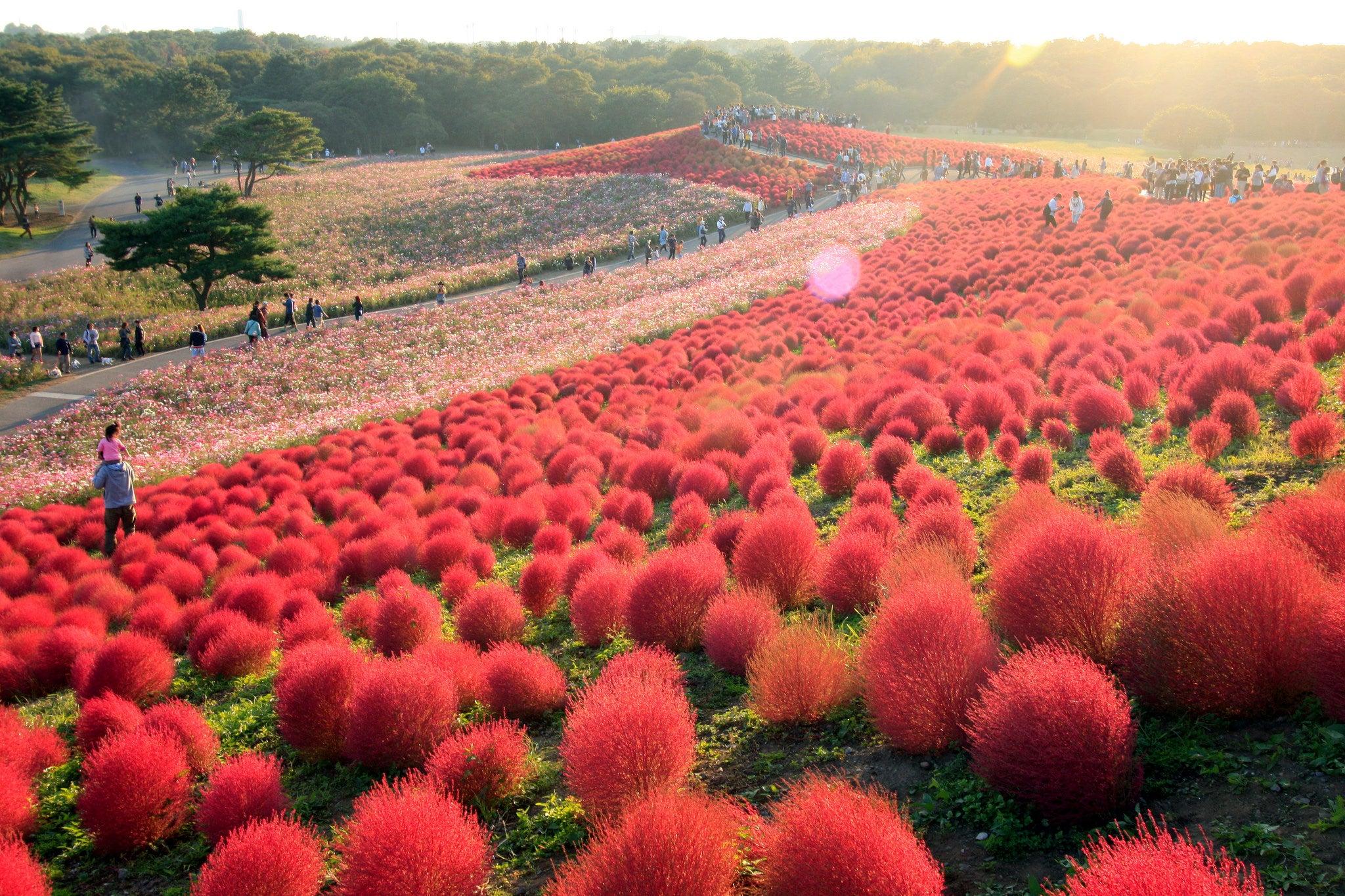 außergewöhnliche reiseziele weltweit