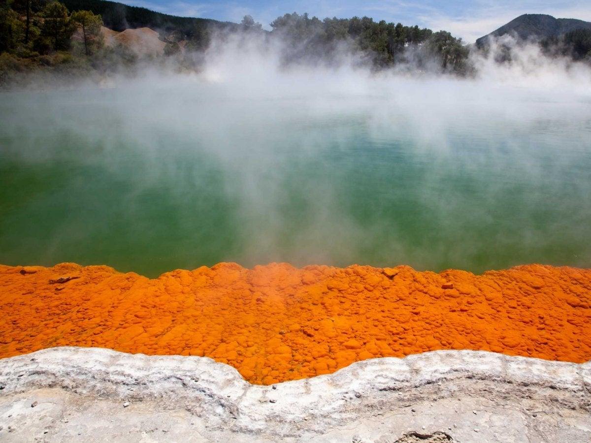 Rotorua Hot springs in Rotura, New Zealand