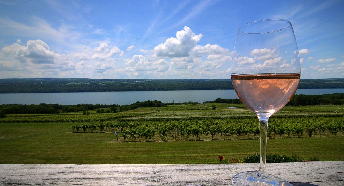sonoma-wines