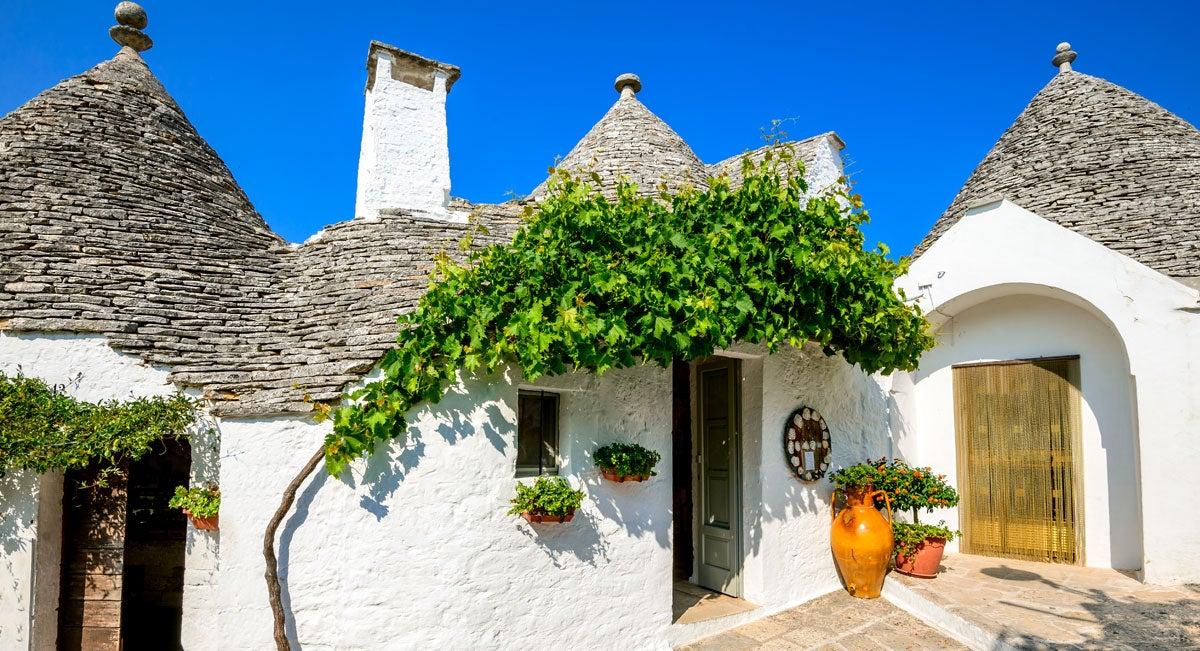 wine-houses