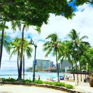 a beach in waikiki hawaii