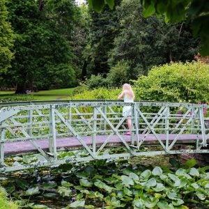 a bridge in the botanic gardens dublin
