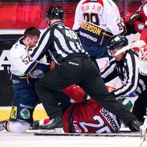 two players fighting in a hockey match in stockholm sweden