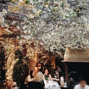 diners on the flowery terrace at clos maggiore