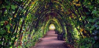 the lover's arch at kensington palace gardens london