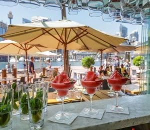 margaritas at a ritzy bar in darling harbour sydney