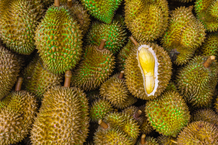 Durian Fruit - Thailand - Opodo