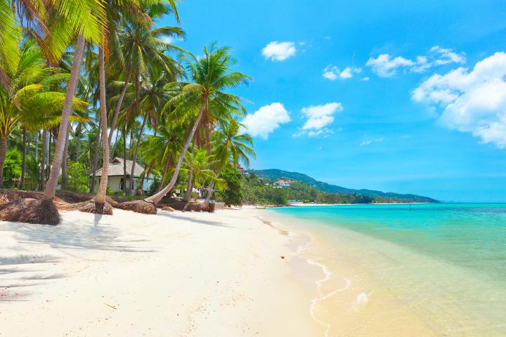 Koh Samui Beach - Thailand - Opodo