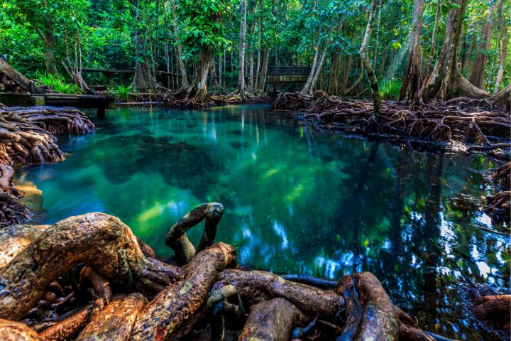 Krabi - Thailand - Opodo