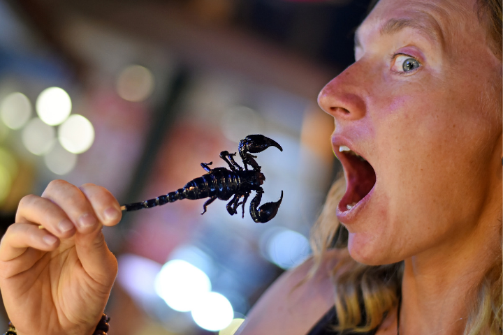 Eating scorpions in Thailand - opodo
