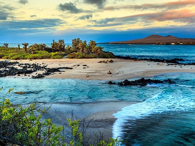 Book cheap Galapagos Islands flights with Opodo